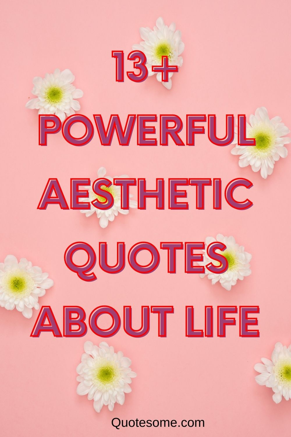 13+ POWERFUL AESTHETIC QUOTES ABOUT LIFE